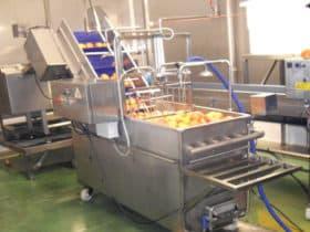 Lavadoras de Vegetales y Frutas